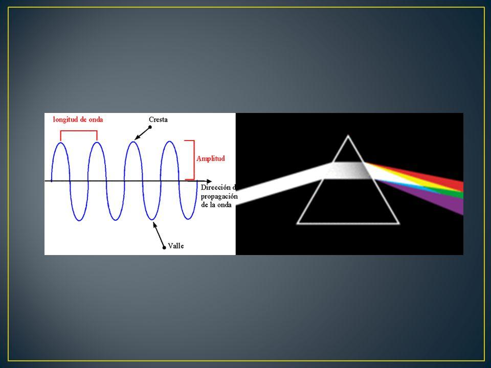 fotones Conos y bastones Corteza visual Nervio óptico