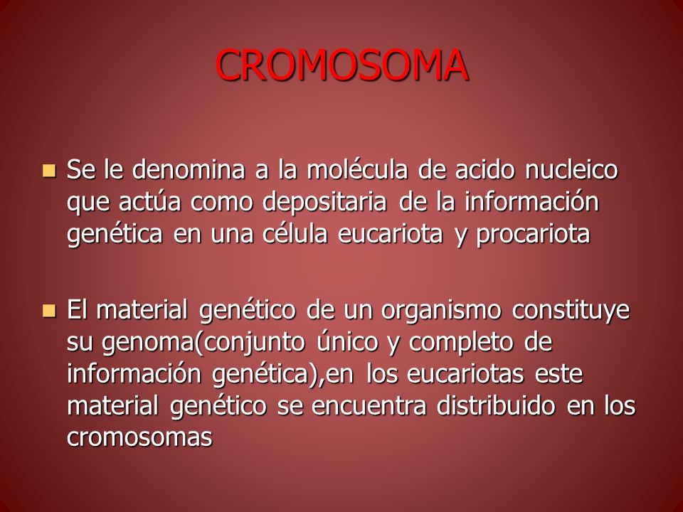 CROMOSOMA Se le denomina a la molécula de acido nucleico que actúa como depositaria de la información genética en una célula eucariota y procariota Se le denomina a la molécula de acido nucleico que actúa como depositaria de la información genética en una célula eucariota y procariota El material genético de un organismo constituye su genoma(conjunto único y completo de información genética),en los eucariotas este material genético se encuentra distribuido en los cromosomas El material genético de un organismo constituye su genoma(conjunto único y completo de información genética),en los eucariotas este material genético se encuentra distribuido en los cromosomas