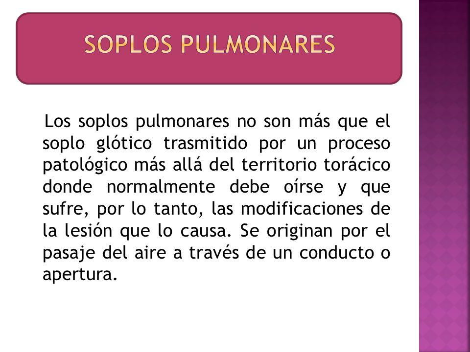 Los soplos pulmonares no son más que el soplo glótico trasmitido por un proceso patológico más allá del territorio torácico donde normalmente debe oír