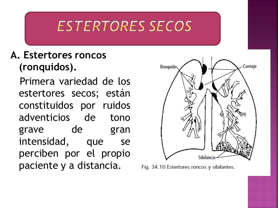 A. Estertores roncos (ronquidos). Primera variedad de los estertores secos; están constituidos por ruidos adventicios de tono grave de gran intensidad