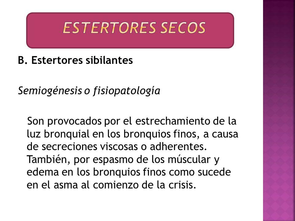 B. Estertores sibilantes Semiogénesis o fisiopatología Son provocados por el estrechamiento de la luz bronquial en los bronquios finos, a causa de sec