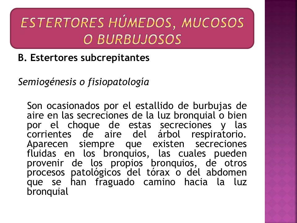B. Estertores subcrepitantes Semiogénesis o fisiopatología Son ocasionados por el estallido de burbujas de aire en las secreciones de la luz bronquial