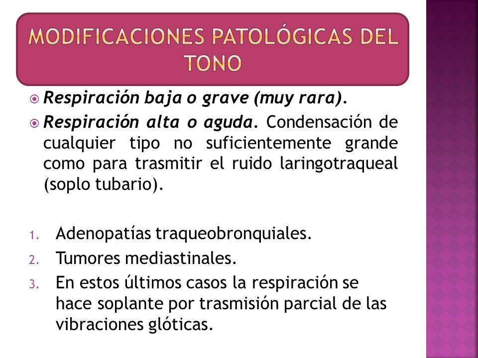 Semiogénesis o fisiopatología Los estertores roncos son provocados por el paso del aire a través de los estrechamientos de la luz de los bronquios de mediano y grueso calibres por: a) Tumefacción inflamatoria de la mucosa.