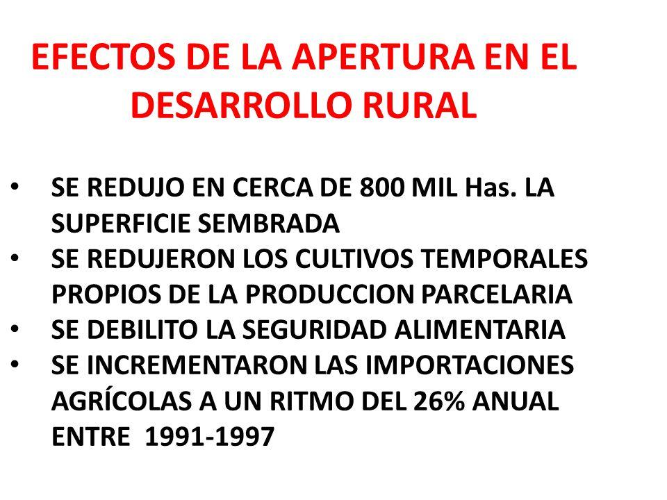 EFECTOS DE LA APERTURA EN EL DESARROLLO RURAL SE REDUJO EN CERCA DE 800 MIL Has.