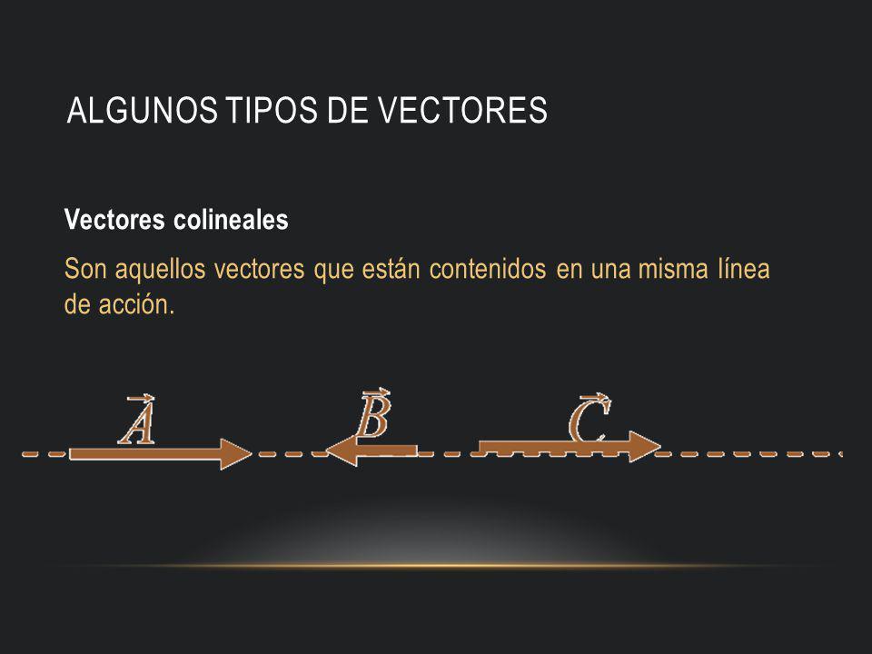 ALGUNOS TIPOS DE VECTORES Vectores colineales Son aquellos vectores que están contenidos en una misma línea de acción.