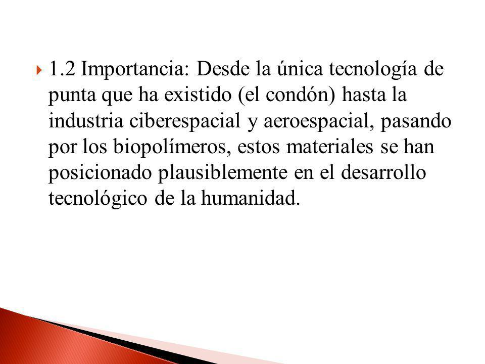 1.2 Importancia: Desde la única tecnología de punta que ha existido (el condón) hasta la industria ciberespacial y aeroespacial, pasando por los biopo