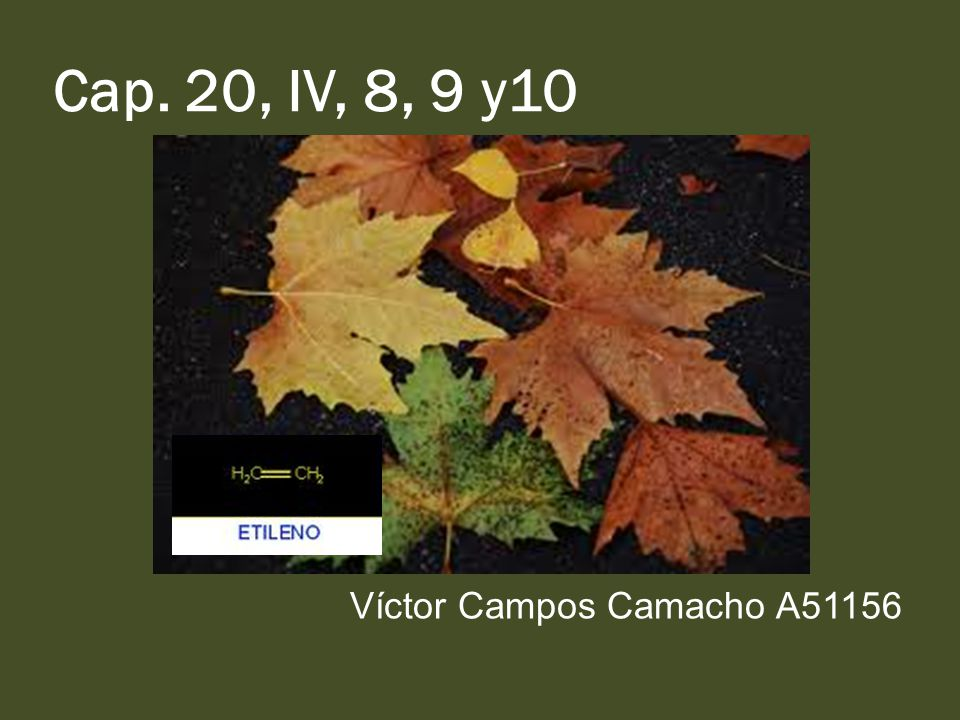 Cap. 20, IV, 8, 9 y10 Víctor Campos Camacho A51156