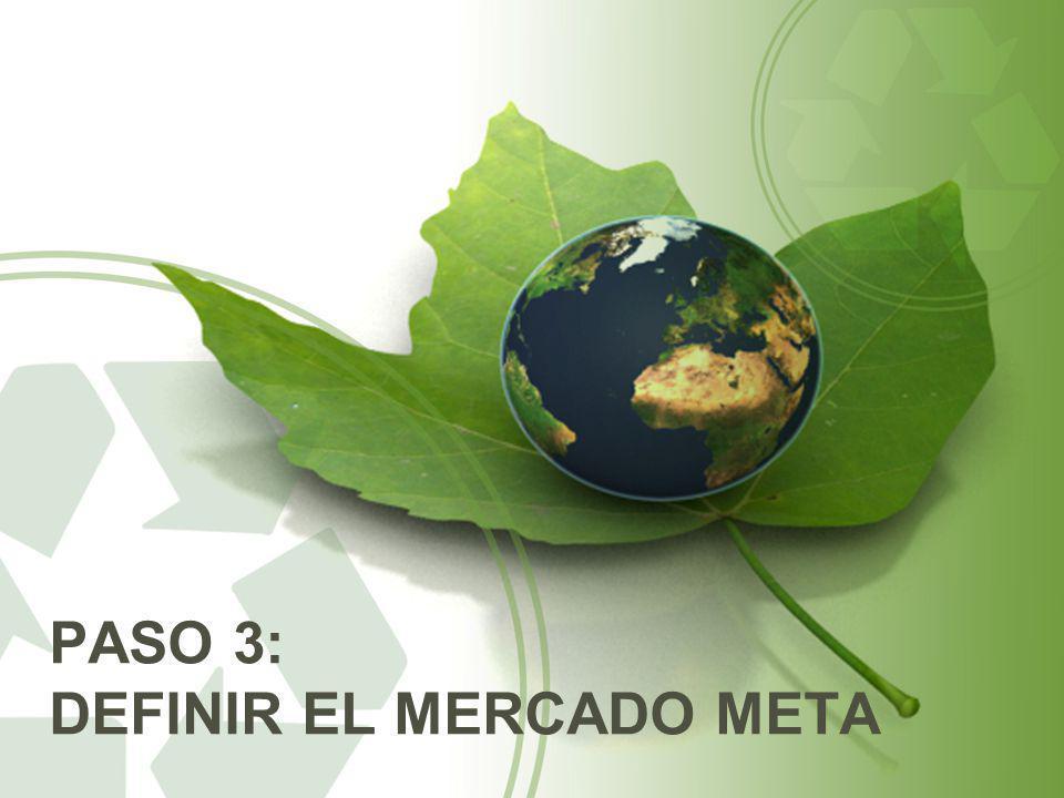 PASO 3: DEFINIR EL MERCADO META