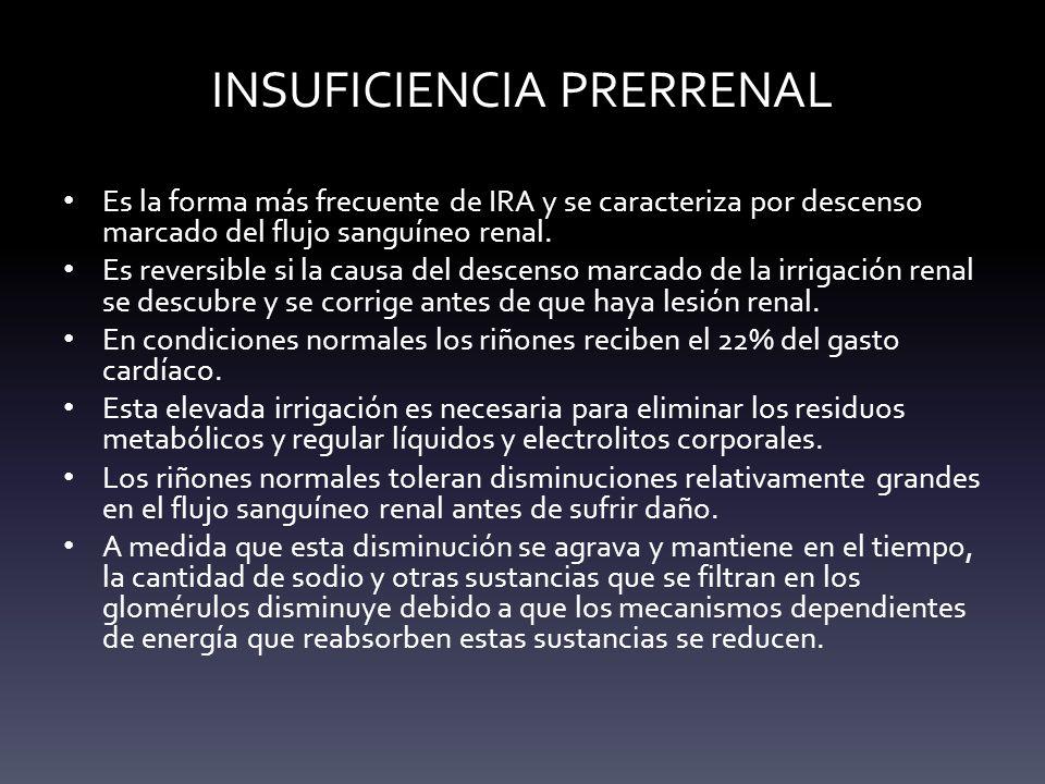 INSUFICIENCIA PRERRENAL Es la forma más frecuente de IRA y se caracteriza por descenso marcado del flujo sanguíneo renal. Es reversible si la causa de