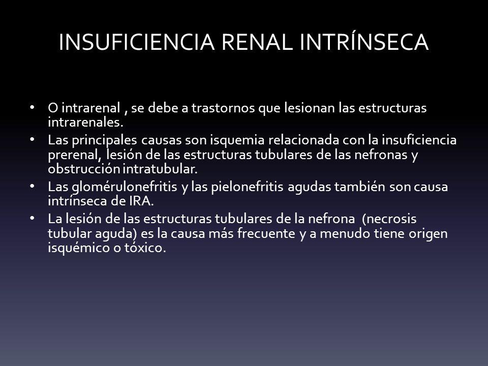 INSUFICIENCIA RENAL INTRÍNSECA O intrarenal, se debe a trastornos que lesionan las estructuras intrarenales. Las principales causas son isquemia relac