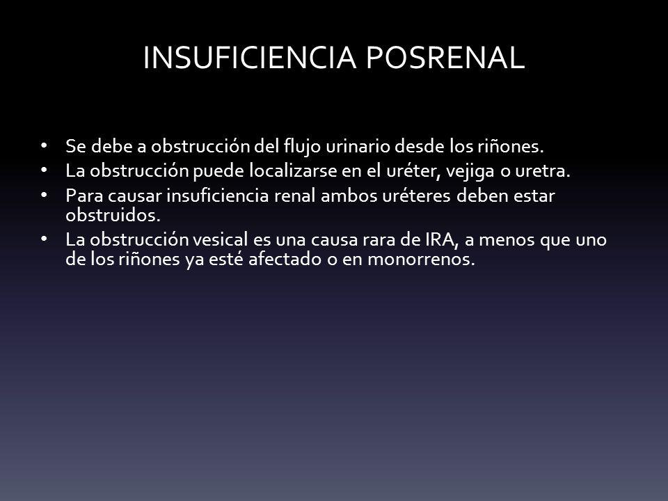 INSUFICIENCIA POSRENAL Se debe a obstrucción del flujo urinario desde los riñones. La obstrucción puede localizarse en el uréter, vejiga o uretra. Par