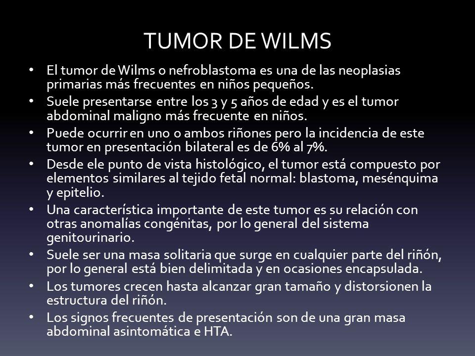TUMOR DE WILMS El tumor de Wilms o nefroblastoma es una de las neoplasias primarias más frecuentes en niños pequeños. Suele presentarse entre los 3 y