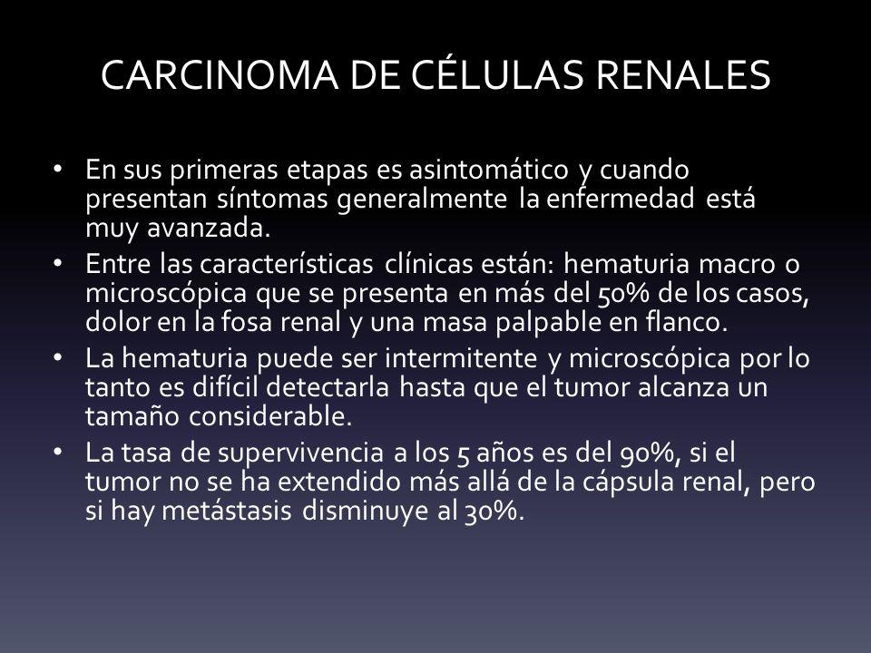 CARCINOMA DE CÉLULAS RENALES En sus primeras etapas es asintomático y cuando presentan síntomas generalmente la enfermedad está muy avanzada. Entre la