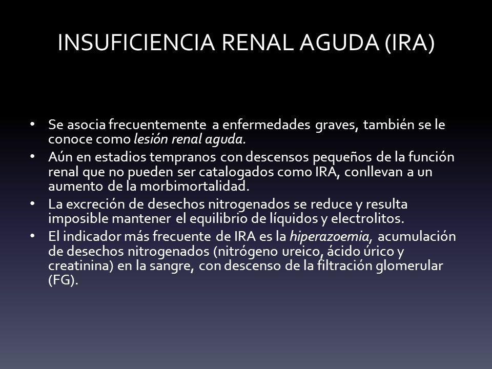 INSUFICIENCIA RENAL AGUDA (IRA) Se asocia frecuentemente a enfermedades graves, también se le conoce como lesión renal aguda. Aún en estadios temprano