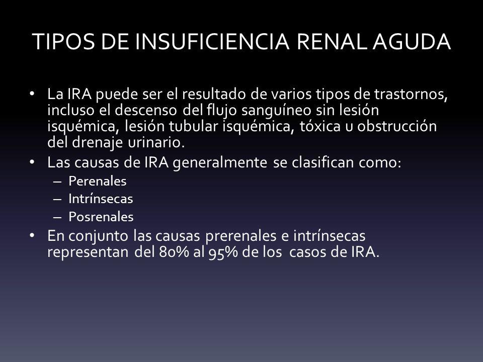TIPOS DE INSUFICIENCIA RENAL AGUDA La IRA puede ser el resultado de varios tipos de trastornos, incluso el descenso del flujo sanguíneo sin lesión isq