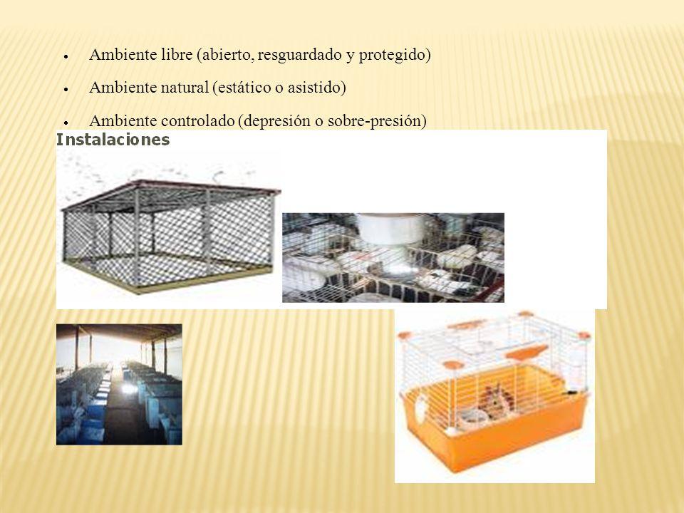 Manejo en el confort en instalaciones y equipos Implantación: Factores de estrés Número de animales y actividad Distribución general Capacidad total y