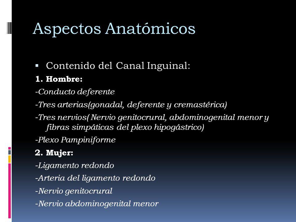 Aspectos Anatómicos Contenido del Canal Inguinal: 1. Hombre: -Conducto deferente -Tres arterias(gonadal, deferente y cremastérica) -Tres nervios( Nerv