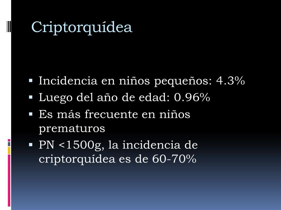 Criptorquídea Incidencia en niños pequeños: 4.3% Luego del año de edad: 0.96% Es más frecuente en niños prematuros PN <1500g, la incidencia de criptorquídea es de 60-70%