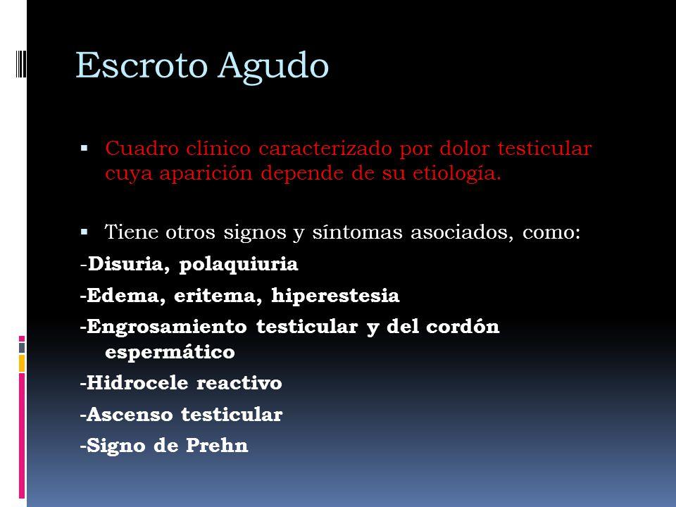 Escroto Agudo Cuadro clínico caracterizado por dolor testicular cuya aparición depende de su etiología. Tiene otros signos y síntomas asociados, como: