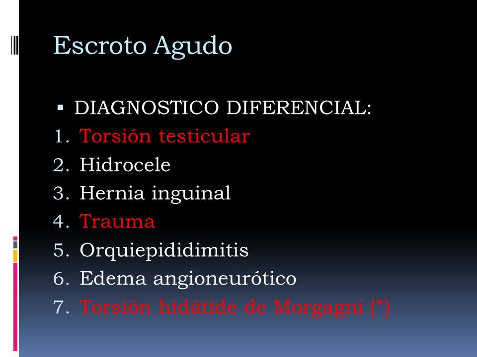 Escroto Agudo DIAGNOSTICO DIFERENCIAL: 1. Torsión testicular 2. Hidrocele 3. Hernia inguinal 4. Trauma 5. Orquiepididimitis 6. Edema angioneurótico 7.
