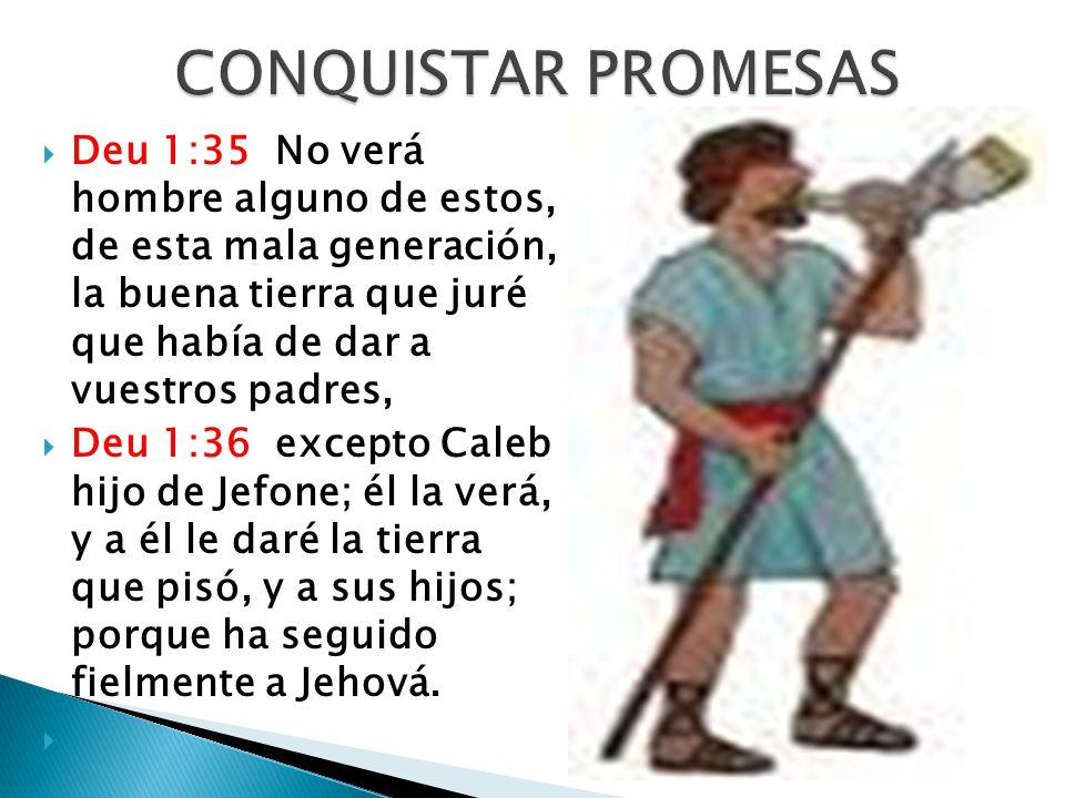 Deu 1:35 No verá hombre alguno de estos, de esta mala generación, la buena tierra que juré que había de dar a vuestros padres, Deu 1:36 excepto Caleb