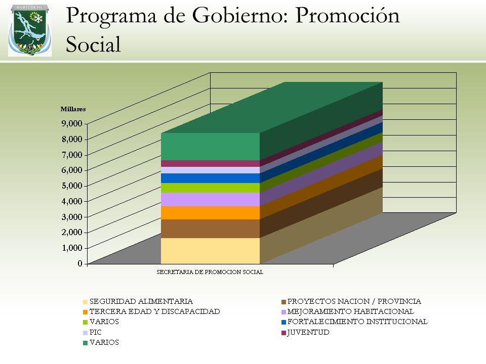 Programa de Gobierno: Promoción Social