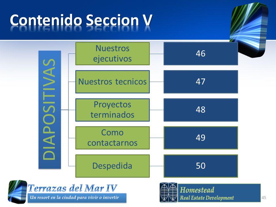 DIAPOSITIVAS Nuestros ejecutivos 46 Nuestros tecnicos47 Proyectos terminados 48 Como contactarnos 49 Despedida50 45