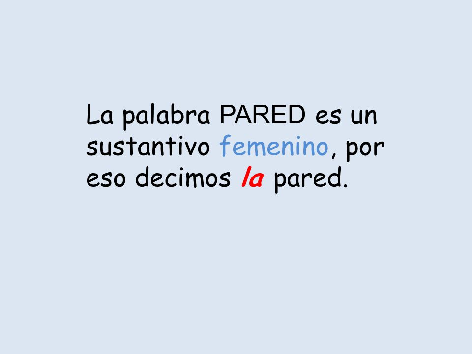 La palabra PARED es un sustantivo femenino, por eso decimos la pared.