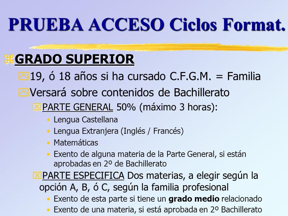 PRUEBA ACCESO Ciclos Format.