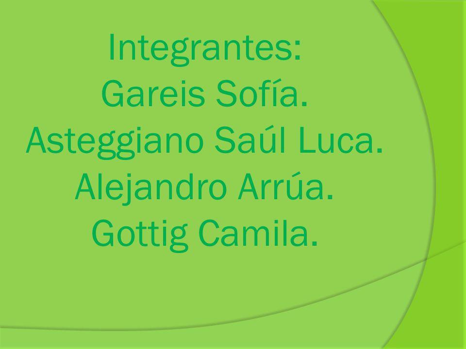 Integrantes: Gareis Sofía. Asteggiano Saúl Luca. Alejandro Arrúa. Gottig Camila.
