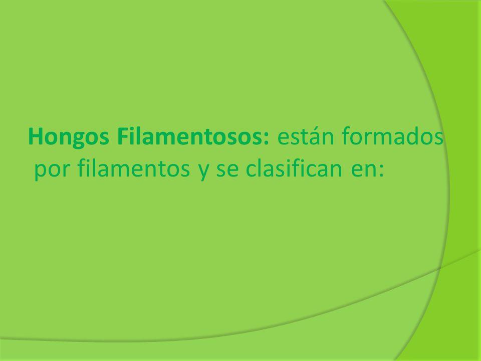 Bibliografía: FRANCO Ricardo y otros, Ciencias Naturales 1.
