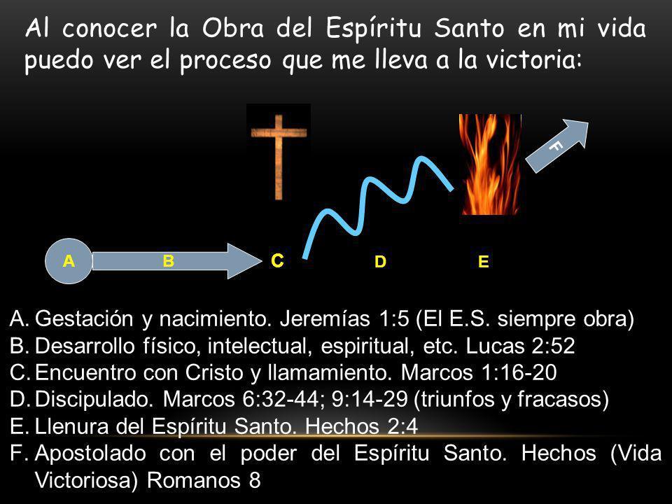 A B C DE F A.Gestación y nacimiento. Jeremías 1:5 (El E.S. siempre obra) B.Desarrollo físico, intelectual, espiritual, etc. Lucas 2:52 C.Encuentro con