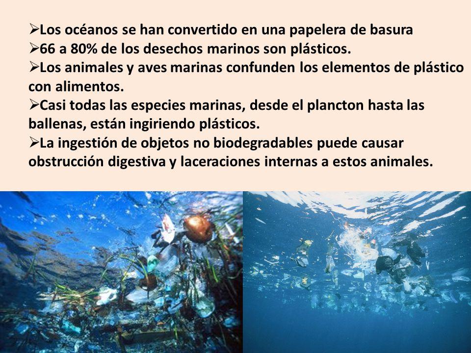 Los océanos se han convertido en una papelera de basura 66 a 80% de los desechos marinos son plásticos. Los animales y aves marinas confunden los elem