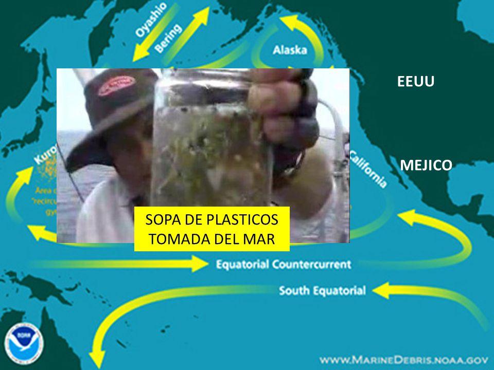 EEUU MEJICO SOPA DE PLASTICOS TOMADA DEL MAR