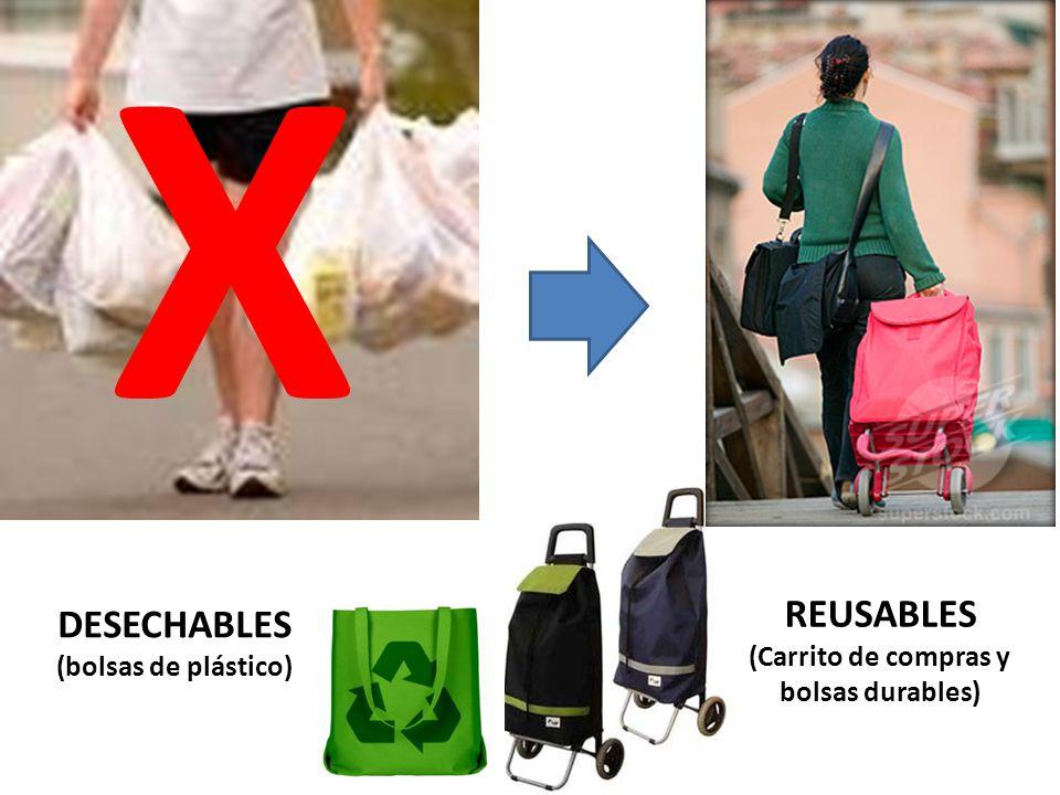 DESECHABLES (bolsas de plástico) REUSABLES (Carrito de compras y bolsas durables) X