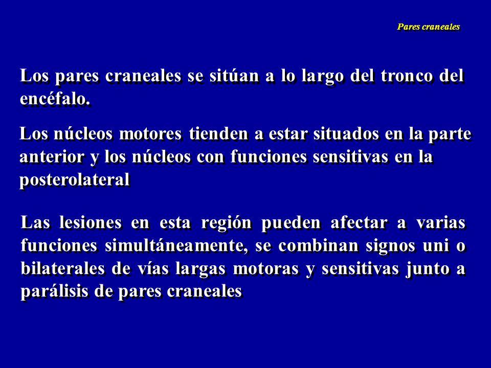 Nervio acústico (VIII) Rama coclear y vestibular *Acúfenos (tinnitus) *Sordera: conducción (lesiones anteriores al órgano de Corti) neurosensorial (perceptiva) (lesión en órgano de Corti) sordera nerviosa (transmisión) (lesión nervio coclear) sordea central Pruebas de Weber y Rinné Audiometría PEA Nervio acústico (VIII) Rama coclear y vestibular *Acúfenos (tinnitus) *Sordera: conducción (lesiones anteriores al órgano de Corti) neurosensorial (perceptiva) (lesión en órgano de Corti) sordera nerviosa (transmisión) (lesión nervio coclear) sordea central Pruebas de Weber y Rinné Audiometría PEA Pares craneales