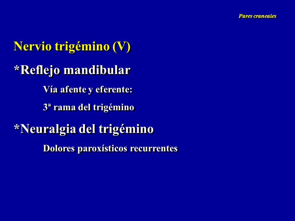 Nervio trigémino (V) *Reflejo mandibular Vía afente y eferente: 3ª rama del trigémino *Neuralgia del trigémino Dolores paroxísticos recurrentes Nervio
