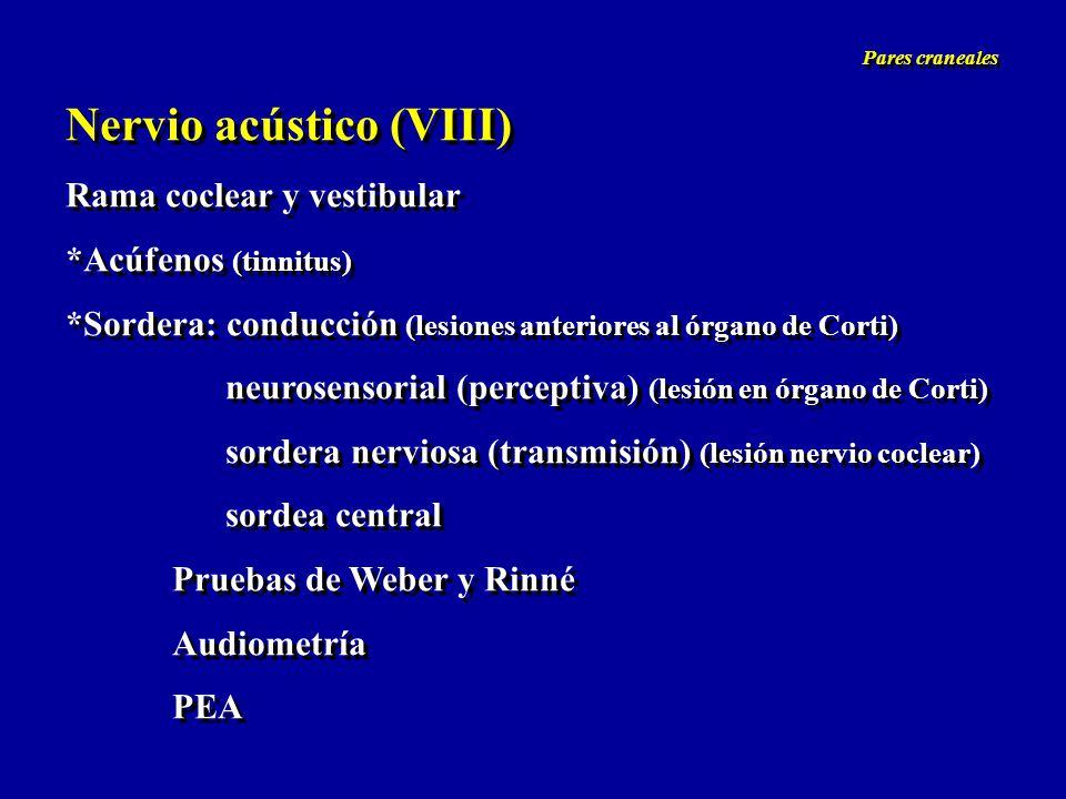 Nervio acústico (VIII) Rama coclear y vestibular *Acúfenos (tinnitus) *Sordera: conducción (lesiones anteriores al órgano de Corti) neurosensorial (pe