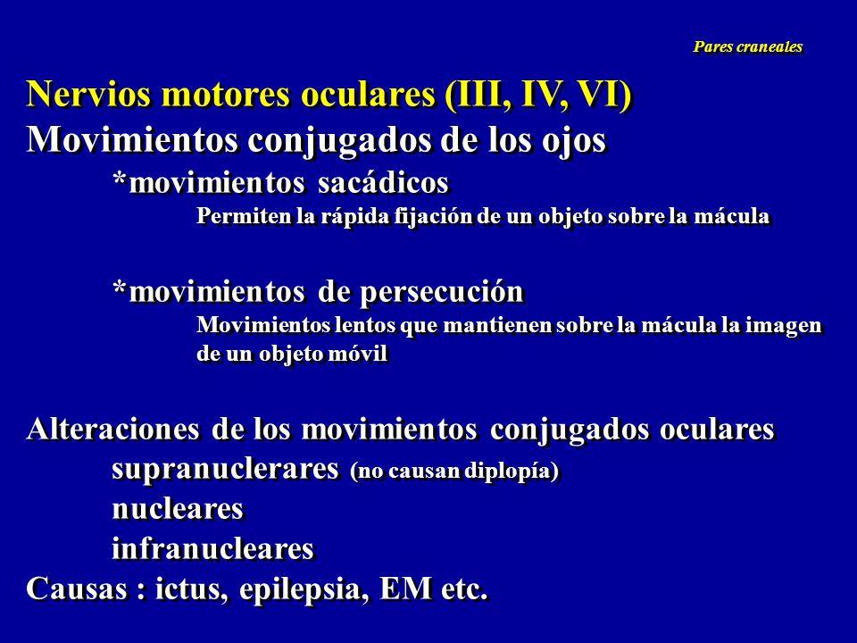 Nervios motores oculares (III, IV, VI) Movimientos conjugados de los ojos *movimientos sacádicos Permiten la rápida fijación de un objeto sobre la mác