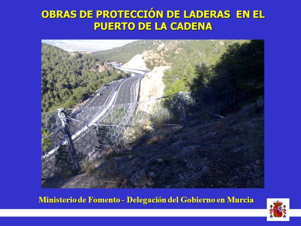 OBRAS DE PROTECCIÓN DE LADERAS EN EL PUERTO DE LA CADENA Ministerio de Fomento - Delegación del Gobierno en Murcia Ministerio de Fomento - Delegación