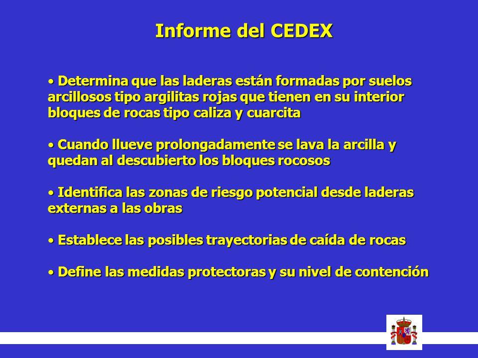 Informe del CEDEX Determina que las laderas están formadas por suelos arcillosos tipo argilitas rojas que tienen en su interior bloques de rocas tipo