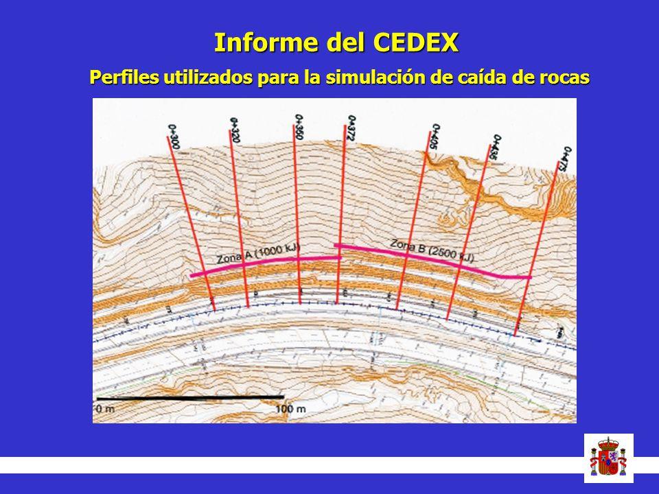 Informe del CEDEX Perfiles utilizados para la simulación de caída de rocas