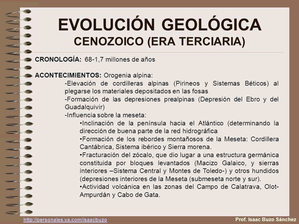 EVOLUCIÓN GEOLÓGICA CENOZOICO (ERA TERCIARIA) Plegamiento de los sedimentos de las fosas tectónicas (Estilo tectónico jurásico Fractura del zócalo y elevación y hundimiento de bloques (Estilo tectónico germánico) Fractura del zócalo y plegamiento de los sedimentos que se encuentran sobre el despues de las transgresiones y regresiones marinas (Estilo tectónico sajónico) Depresiones prealpinas Basculación hacia el atántico Prof.