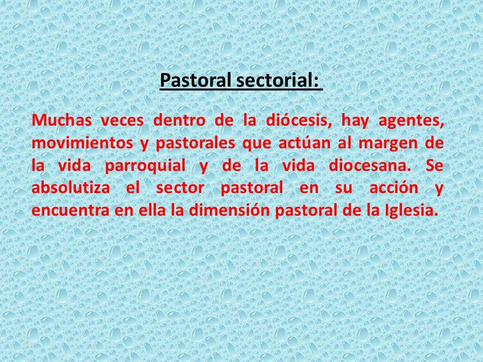 Muchas veces dentro de la diócesis, hay agentes, movimientos y pastorales que actúan al margen de la vida parroquial y de la vida diocesana.