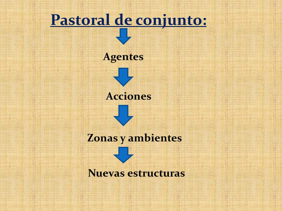 Pastoral de conjunto: Agentes Acciones Zonas y ambientes Nuevas estructuras