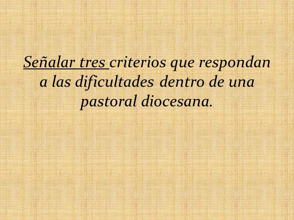 Señalar tres criterios que respondan a las dificultades dentro de una pastoral diocesana.