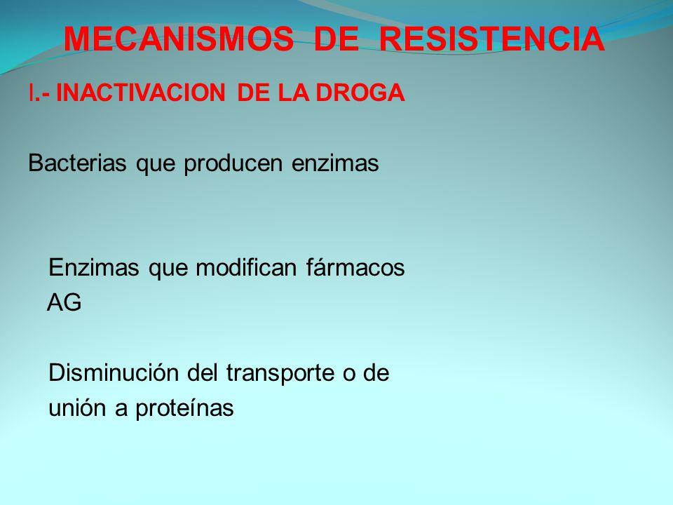 MECANISMOS DE RESISTENCIA I.- INACTIVACION DE LA DROGA Bacterias que producen enzimas Enzimas que modifican fármacos AG Disminución del transporte o d