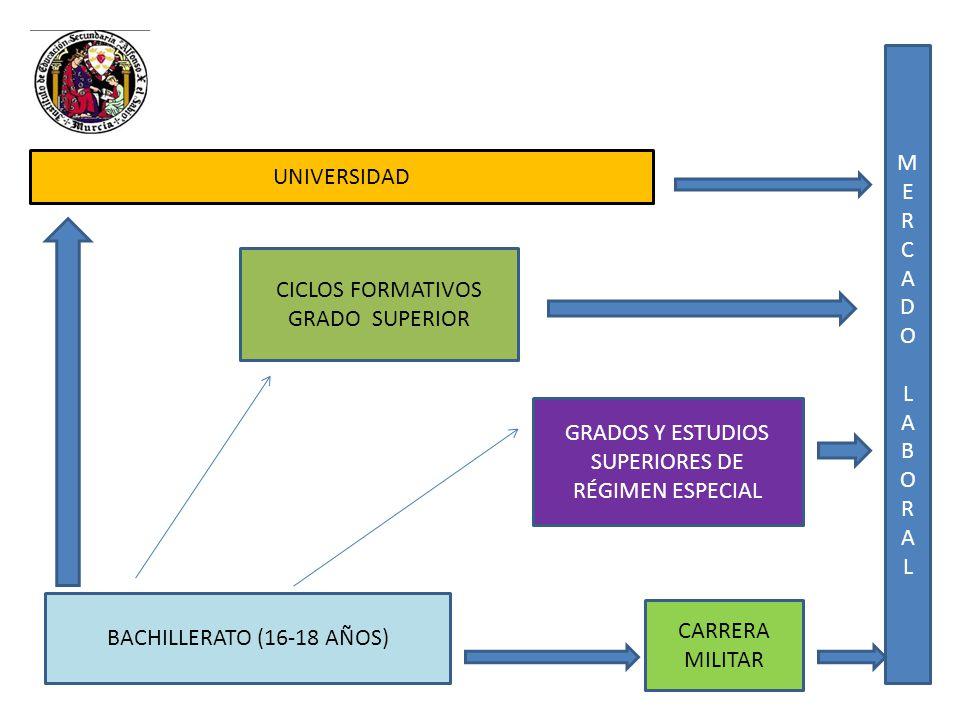 MERCADOLABORALMERCADOLABORAL CICLOS FORMATIVOS GRADO SUPERIOR BACHILLERATO (16-18 AÑOS) CARRERA MILITAR GRADOS Y ESTUDIOS SUPERIORES DE RÉGIMEN ESPECI