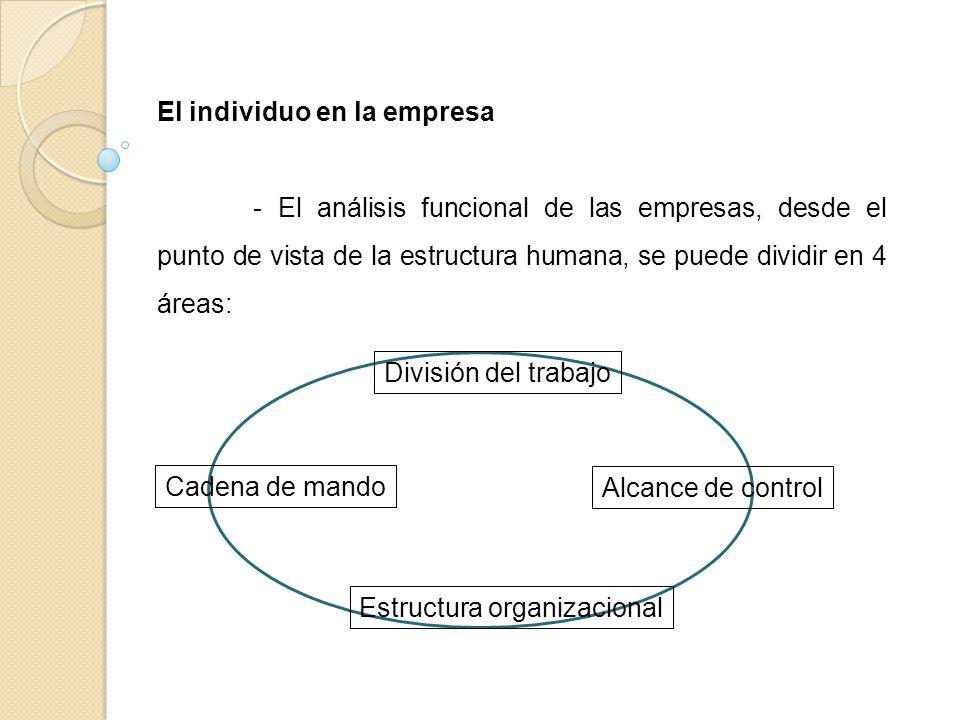 El individuo en la empresa - El análisis funcional de las empresas, desde el punto de vista de la estructura humana, se puede dividir en 4 áreas: Divi