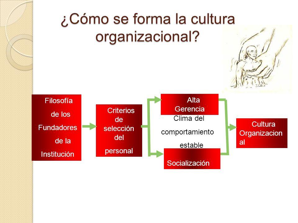 ¿Cómo se forma la cultura organizacional? Filosofía de los Fundadores de la Institución Criterios de selección del personal Alta Gerencia Socializació